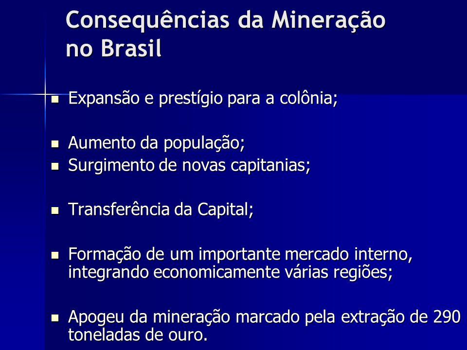 Consequências da Mineração no Brasil
