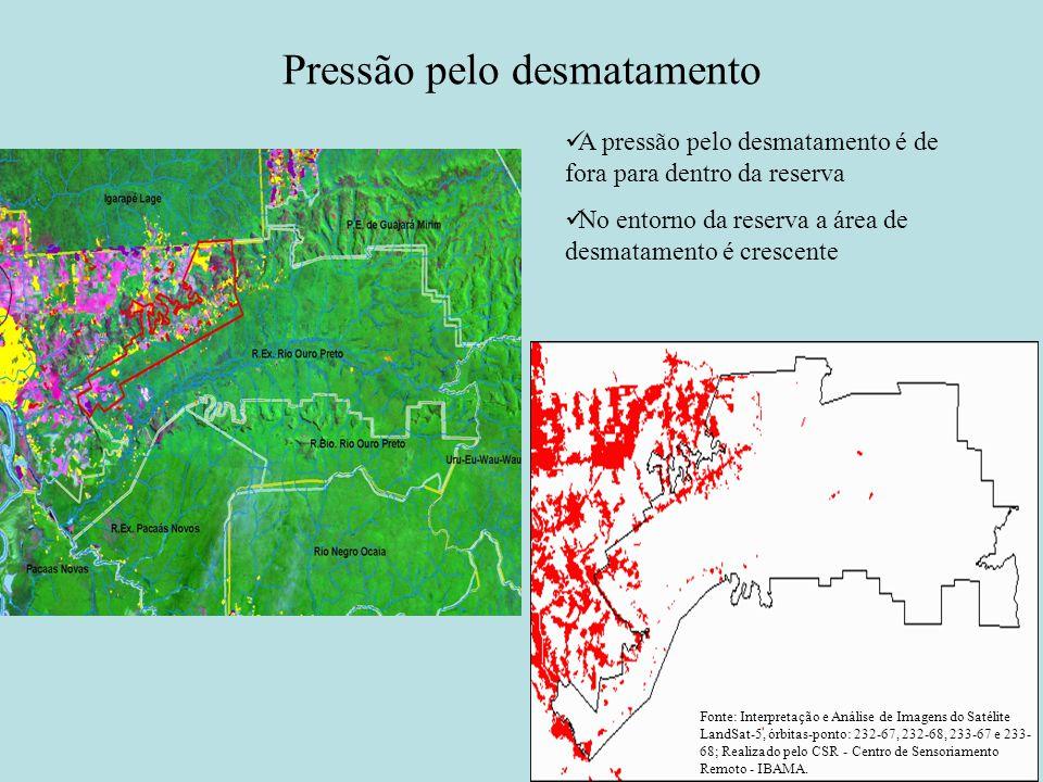 Pressão pelo desmatamento