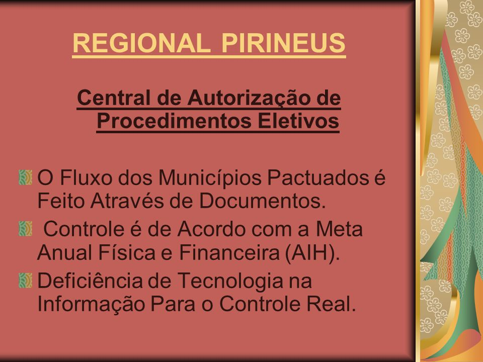 Central de Autorização de Procedimentos Eletivos