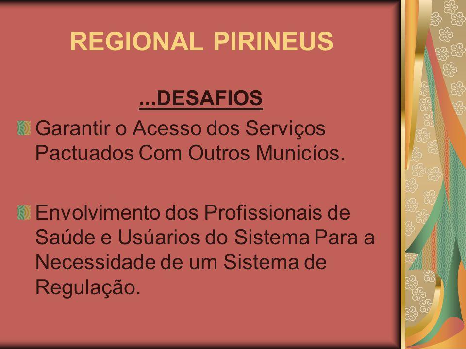 REGIONAL PIRINEUS ...DESAFIOS
