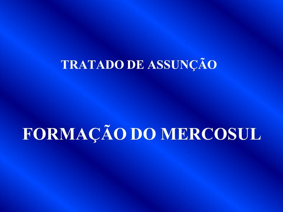 TRATADO DE ASSUNÇÃO FORMAÇÃO DO MERCOSUL
