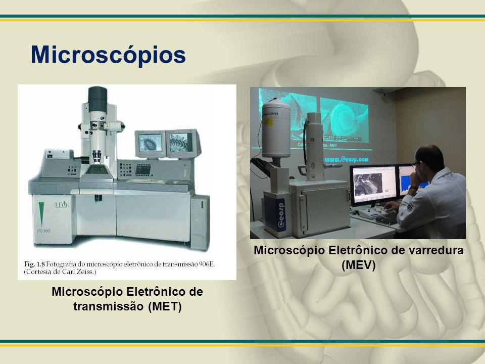 Microscópios Microscópio Eletrônico de varredura (MEV)