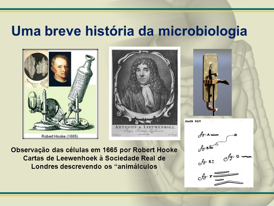 Uma breve história da microbiologia