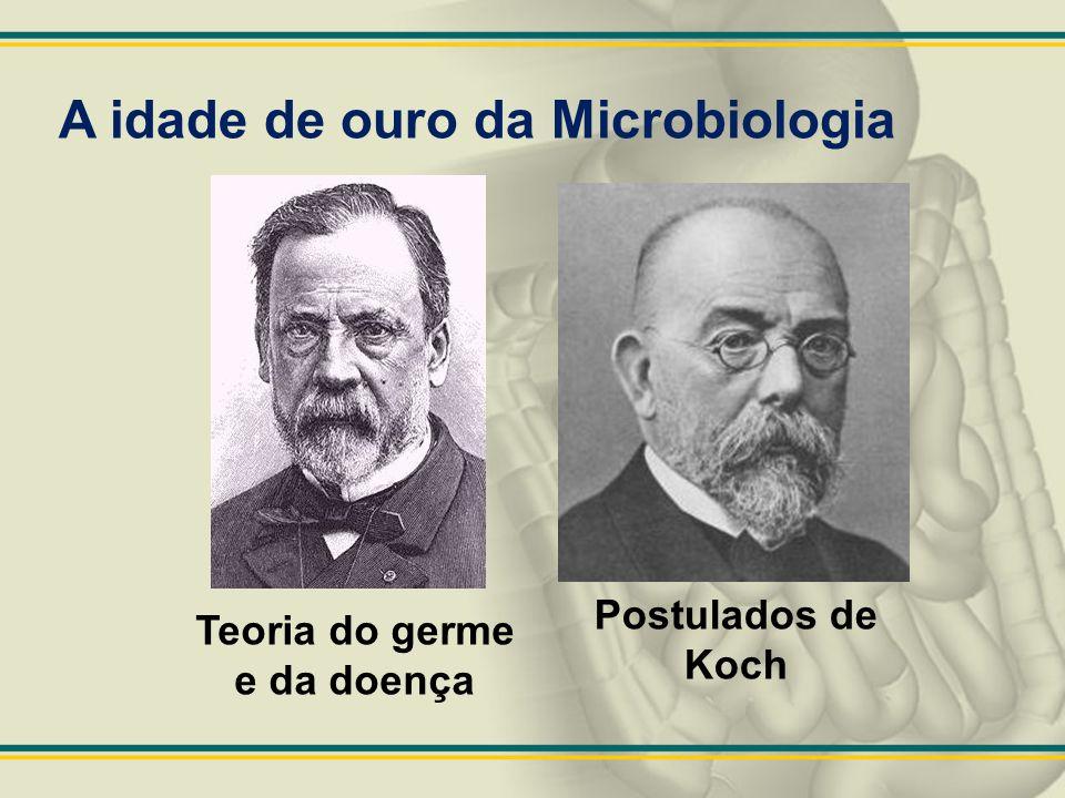 A idade de ouro da Microbiologia