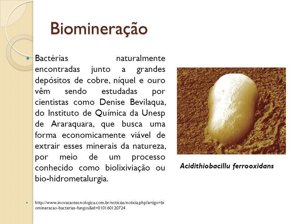 Biomineração