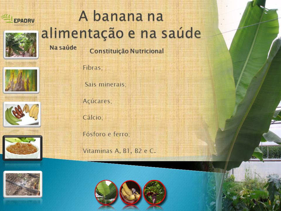 A banana na alimentação e na saúde