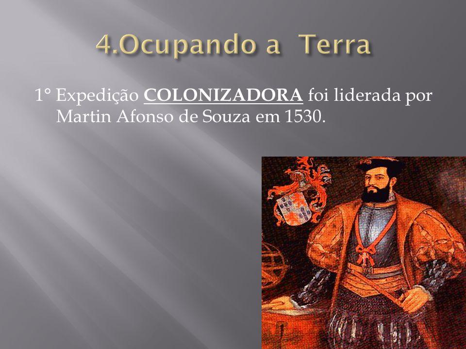 4.Ocupando a Terra 1° Expedição COLONIZADORA foi liderada por Martin Afonso de Souza em 1530.
