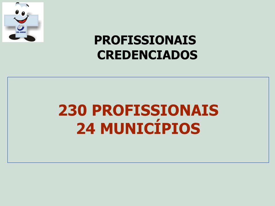 230 PROFISSIONAIS 24 MUNICÍPIOS