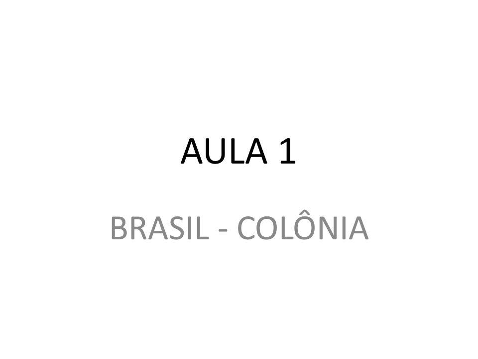 AULA 1 BRASIL - COLÔNIA