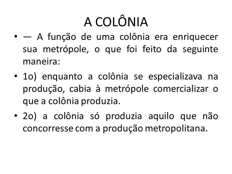 A COLÔNIA — A função de uma colônia era enriquecer sua metrópole, o que foi feito da seguinte maneira: