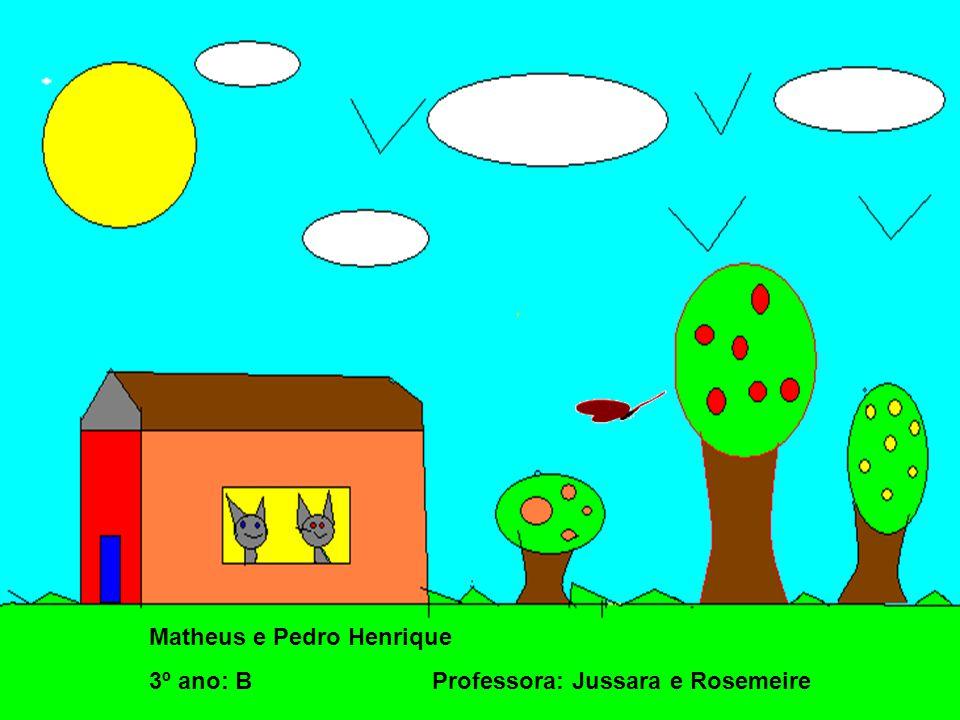 Matheus e Pedro Henrique
