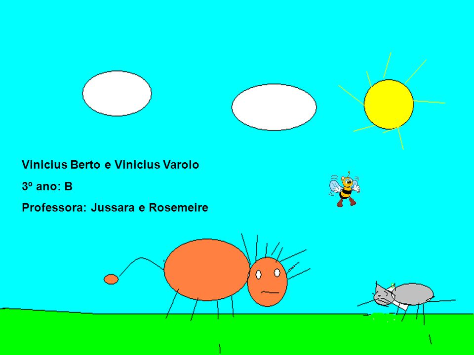 Vinicius Berto e Vinicius Varolo