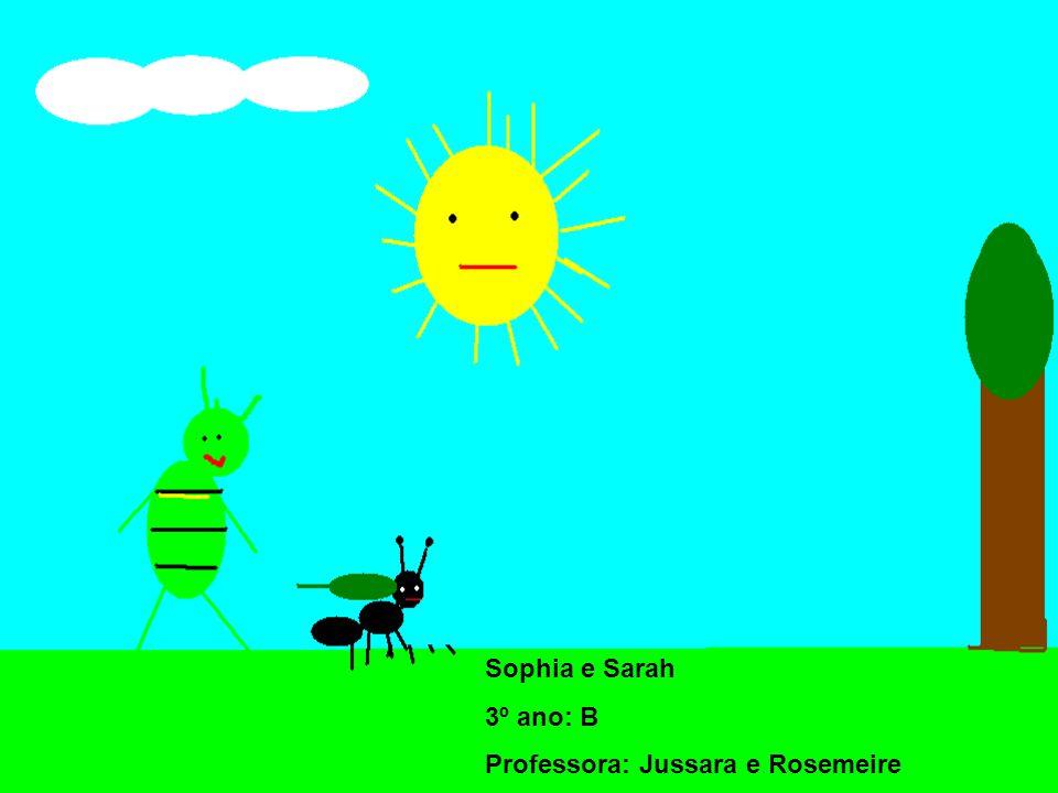 Sophia e Sarah 3º ano: B Professora: Jussara e Rosemeire