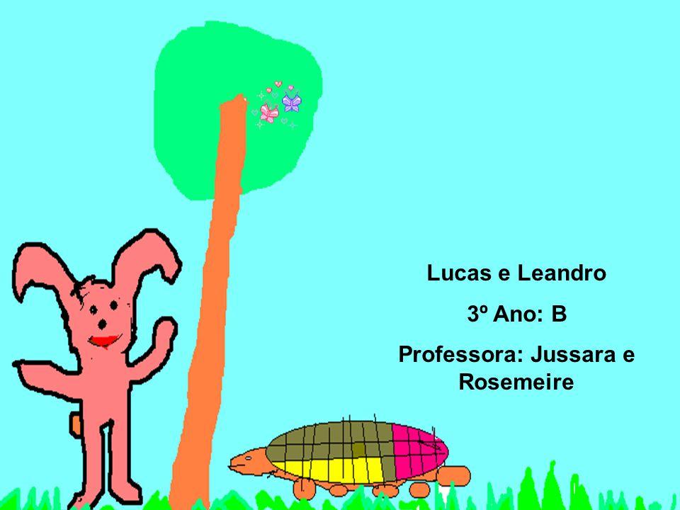 Professora: Jussara e Rosemeire