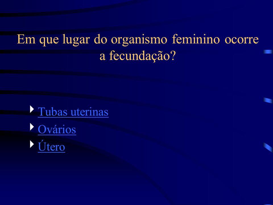 Em que lugar do organismo feminino ocorre a fecundação