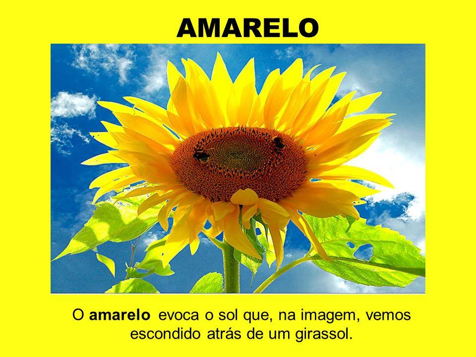 AMARELO O amarelo evoca o sol que, na imagem, vemos escondido atrás de um girassol.