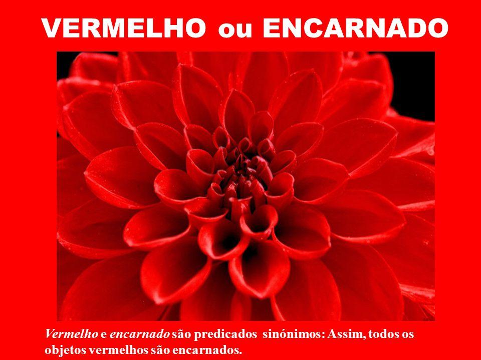 VERMELHO ou ENCARNADO Vermelho e encarnado são predicados sinónimos: Assim, todos os objetos vermelhos são encarnados.