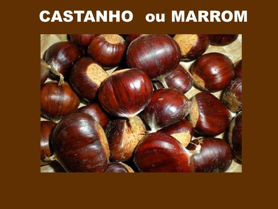 CASTANHO ou MARROM