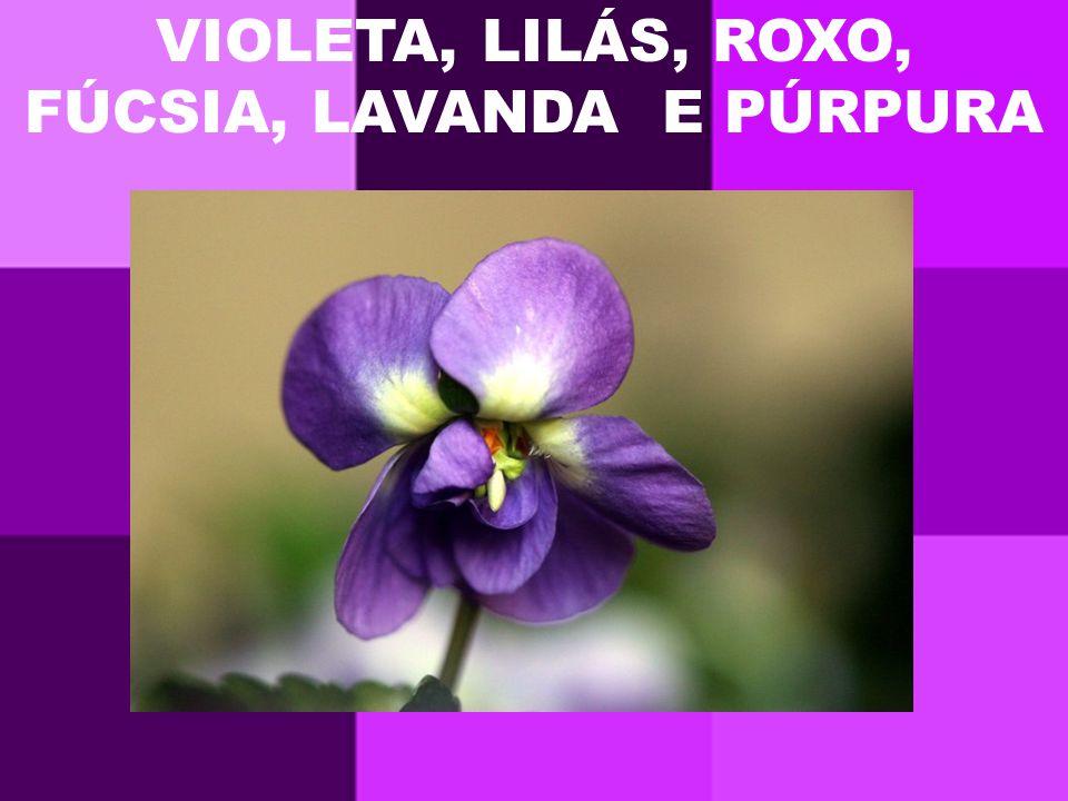 VIOLETA, LILÁS, ROXO, FÚCSIA, LAVANDA E PÚRPURA