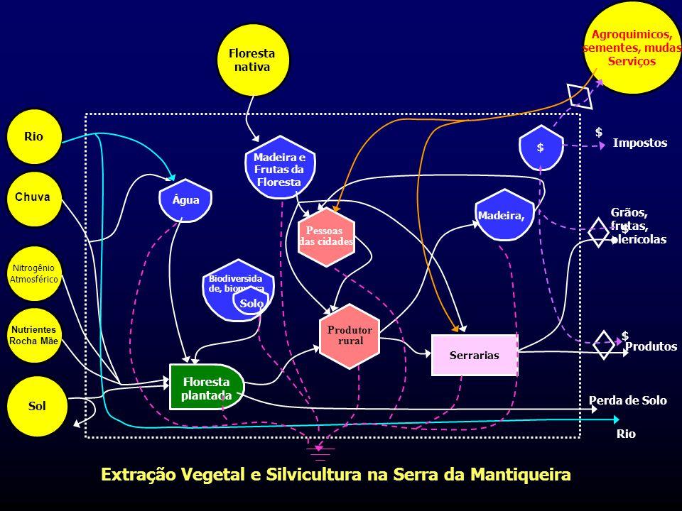 Extração Vegetal e Silvicultura na Serra da Mantiqueira