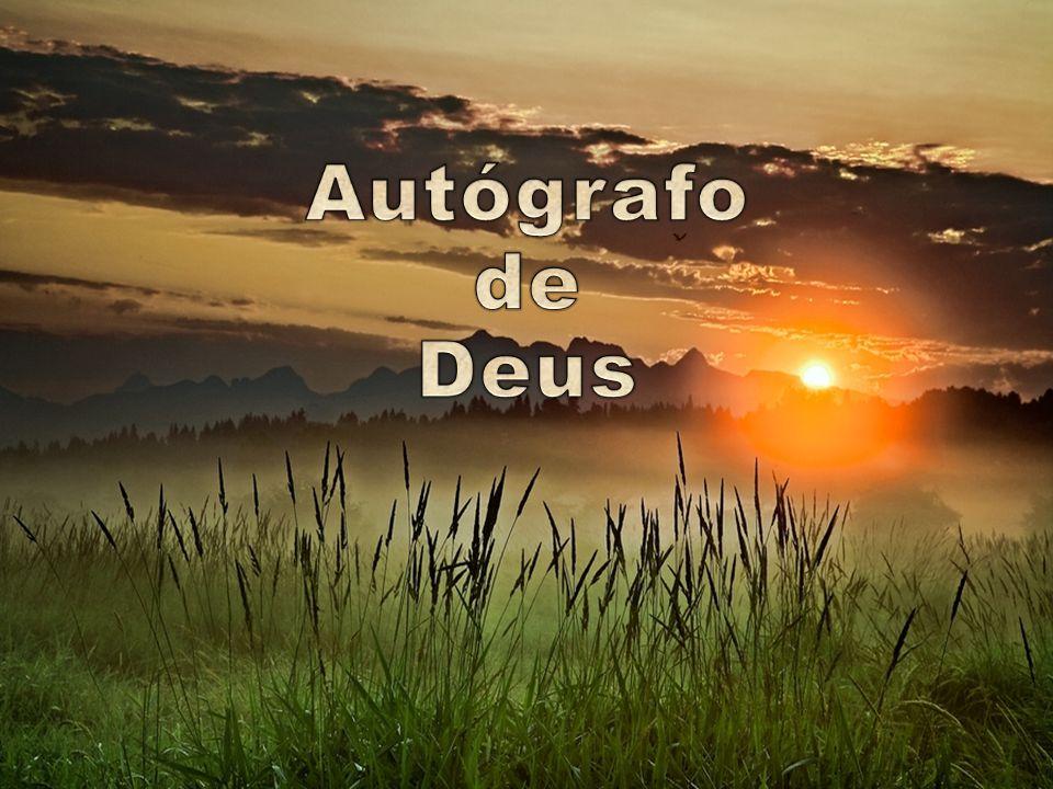 Autógrafo de Deus