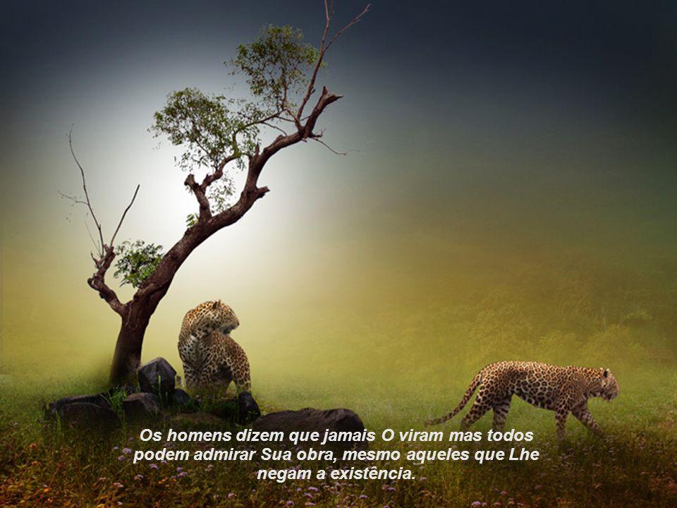 Os homens dizem que jamais O viram mas todos podem admirar Sua obra, mesmo aqueles que Lhe negam a existência.