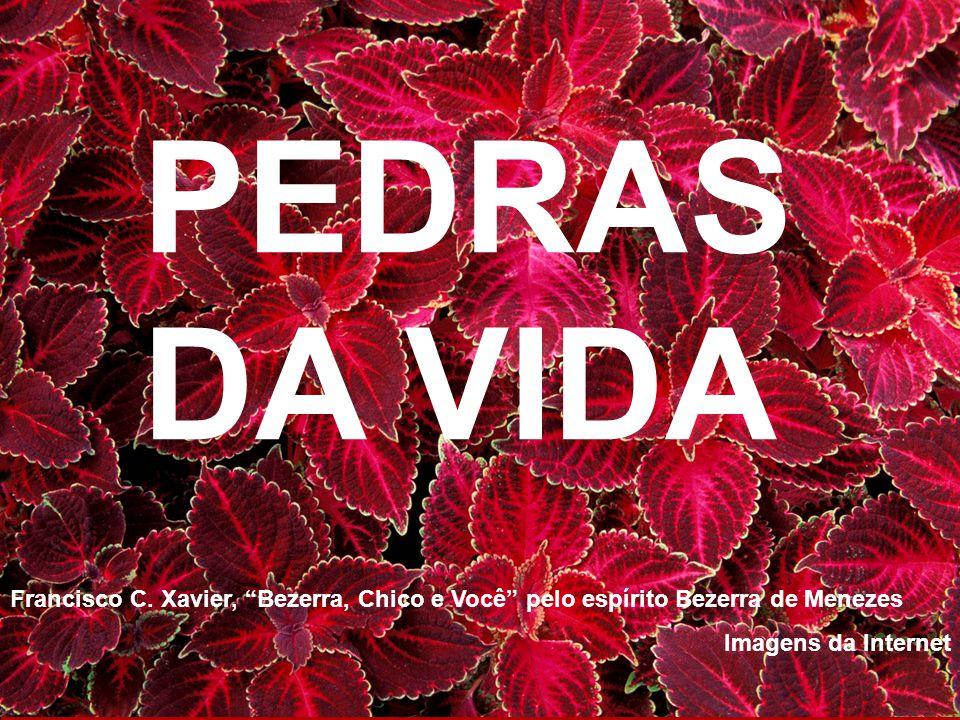 PEDRAS DA VIDA Francisco C. Xavier, Bezerra, Chico e Você pelo espírito Bezerra de Menezes.