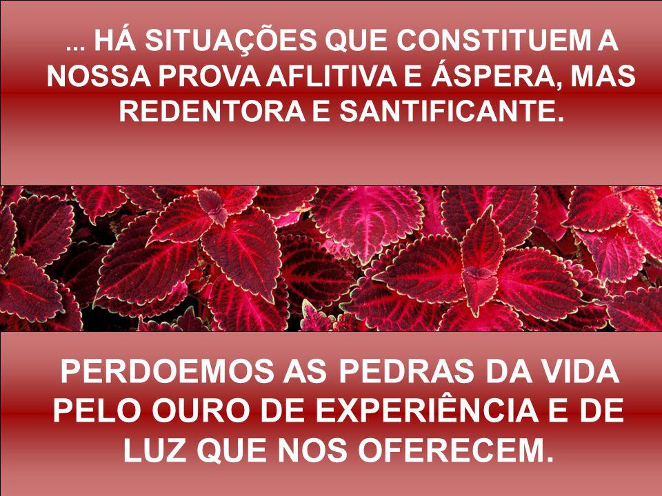 ... HÁ SITUAÇÕES QUE CONSTITUEM A NOSSA PROVA AFLITIVA E ÁSPERA, MAS REDENTORA E SANTIFICANTE.