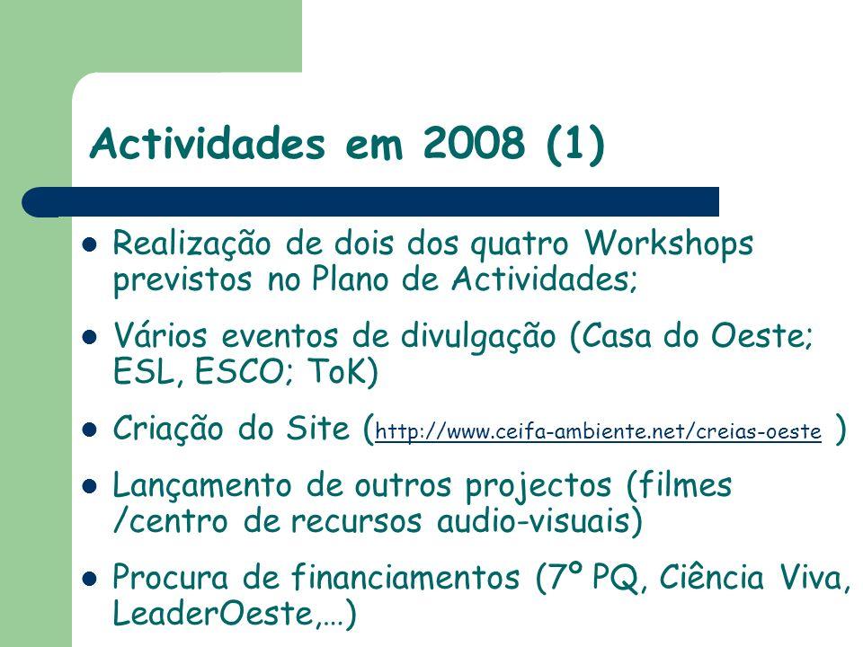 Actividades em 2008 (1) Realização de dois dos quatro Workshops previstos no Plano de Actividades;