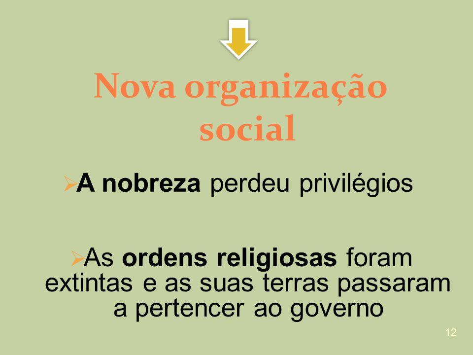 Nova organização social