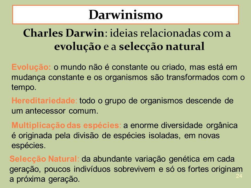 Darwinismo Charles Darwin: ideias relacionadas com a evolução e a selecção natural.