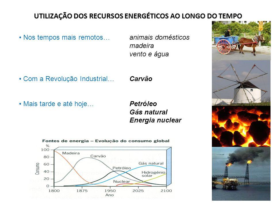 UTILIZAÇÃO DOS RECURSOS ENERGÉTICOS AO LONGO DO TEMPO