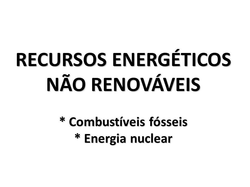 RECURSOS ENERGÉTICOS NÃO RENOVÁVEIS. Combustíveis fósseis