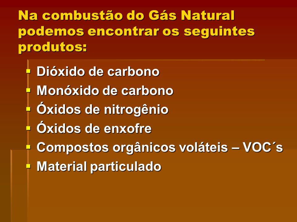 Na combustão do Gás Natural podemos encontrar os seguintes produtos: