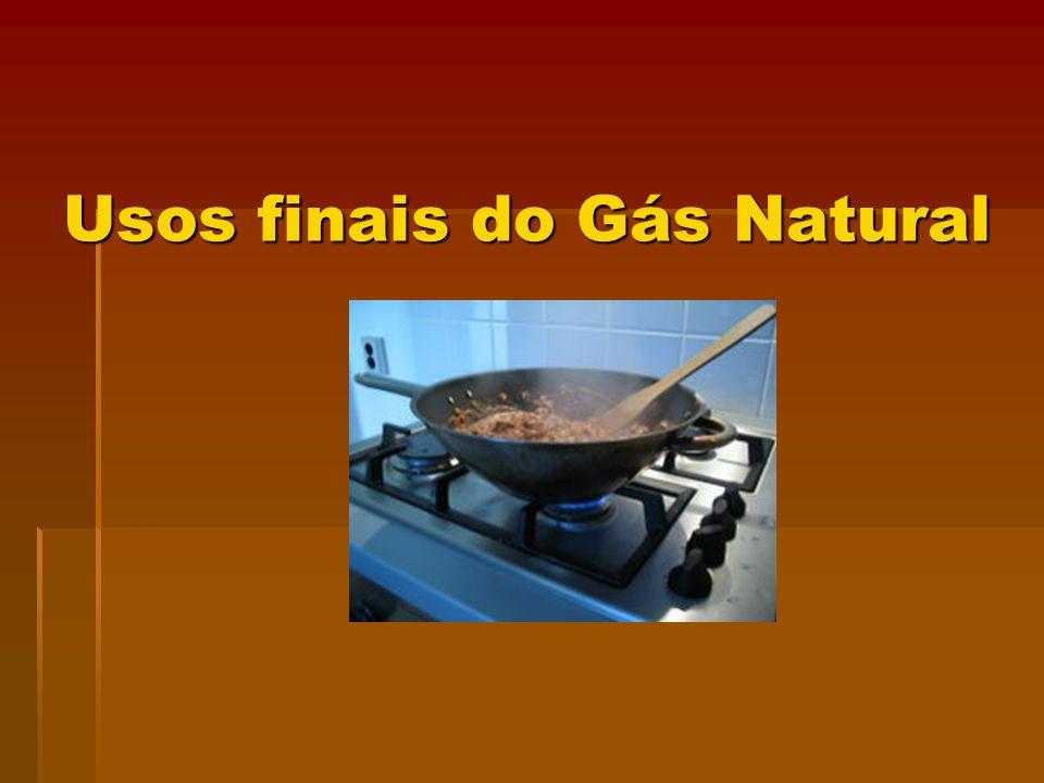 Usos finais do Gás Natural