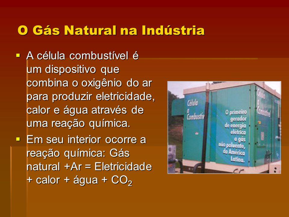 O Gás Natural na Indústria