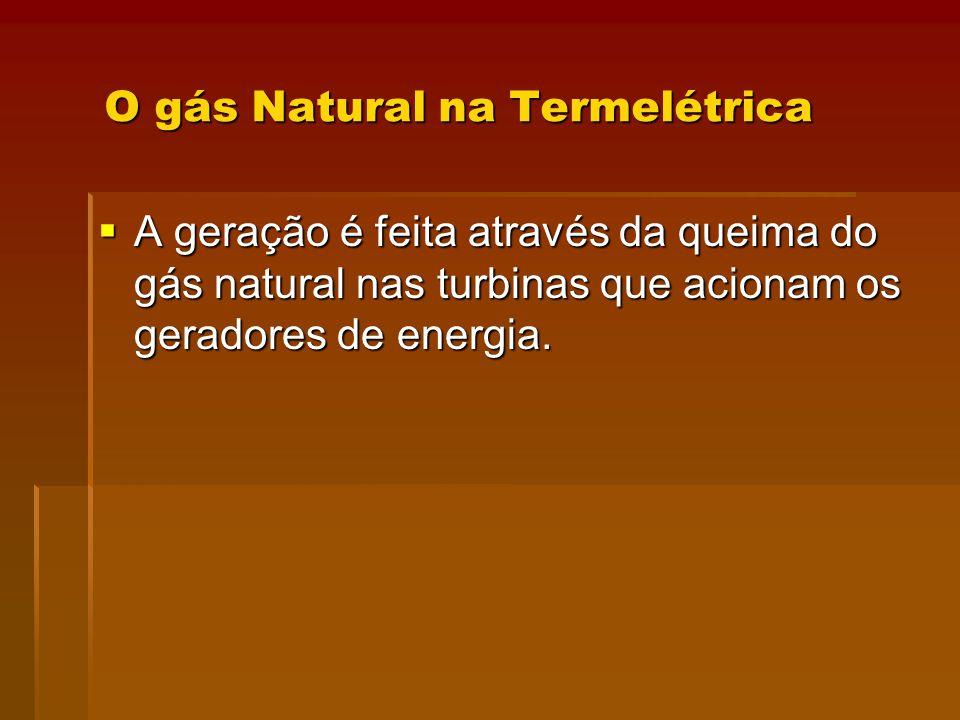 O gás Natural na Termelétrica
