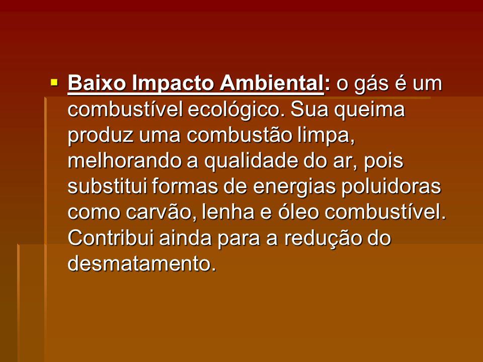 Baixo Impacto Ambiental: o gás é um combustível ecológico