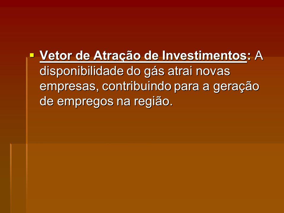 Vetor de Atração de Investimentos: A disponibilidade do gás atrai novas empresas, contribuindo para a geração de empregos na região.