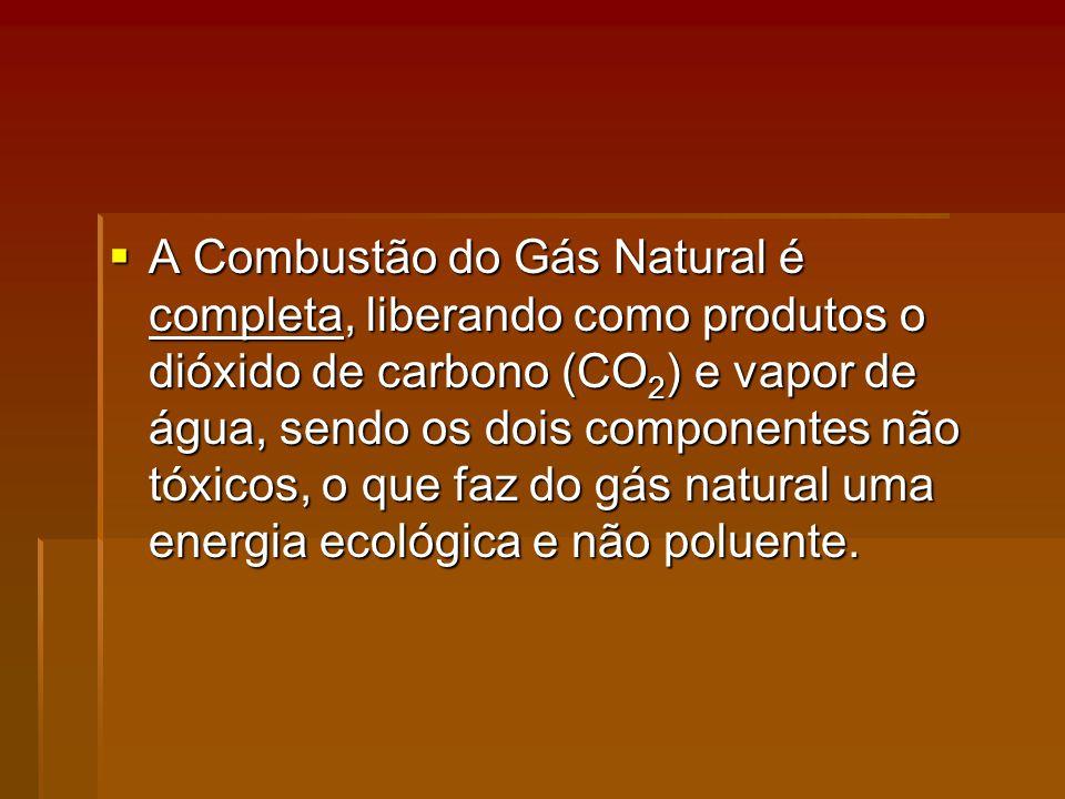 A Combustão do Gás Natural é completa, liberando como produtos o dióxido de carbono (CO2) e vapor de água, sendo os dois componentes não tóxicos, o que faz do gás natural uma energia ecológica e não poluente.