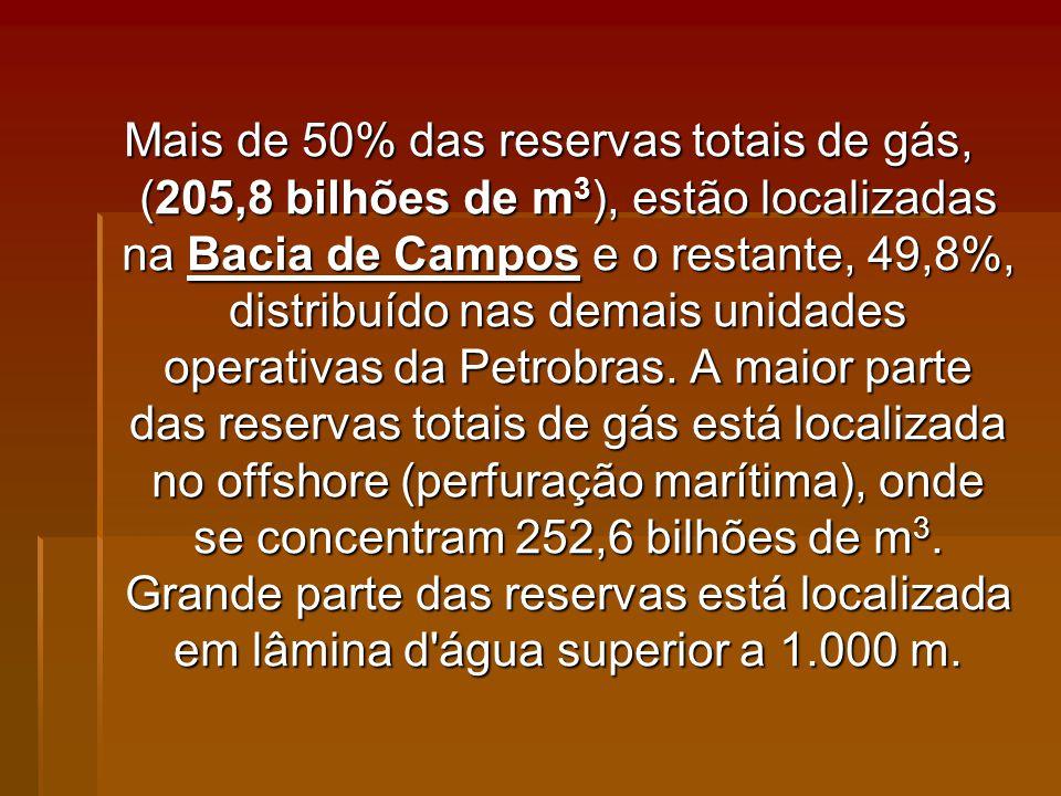 Mais de 50% das reservas totais de gás, (205,8 bilhões de m3), estão localizadas na Bacia de Campos e o restante, 49,8%, distribuído nas demais unidades operativas da Petrobras.