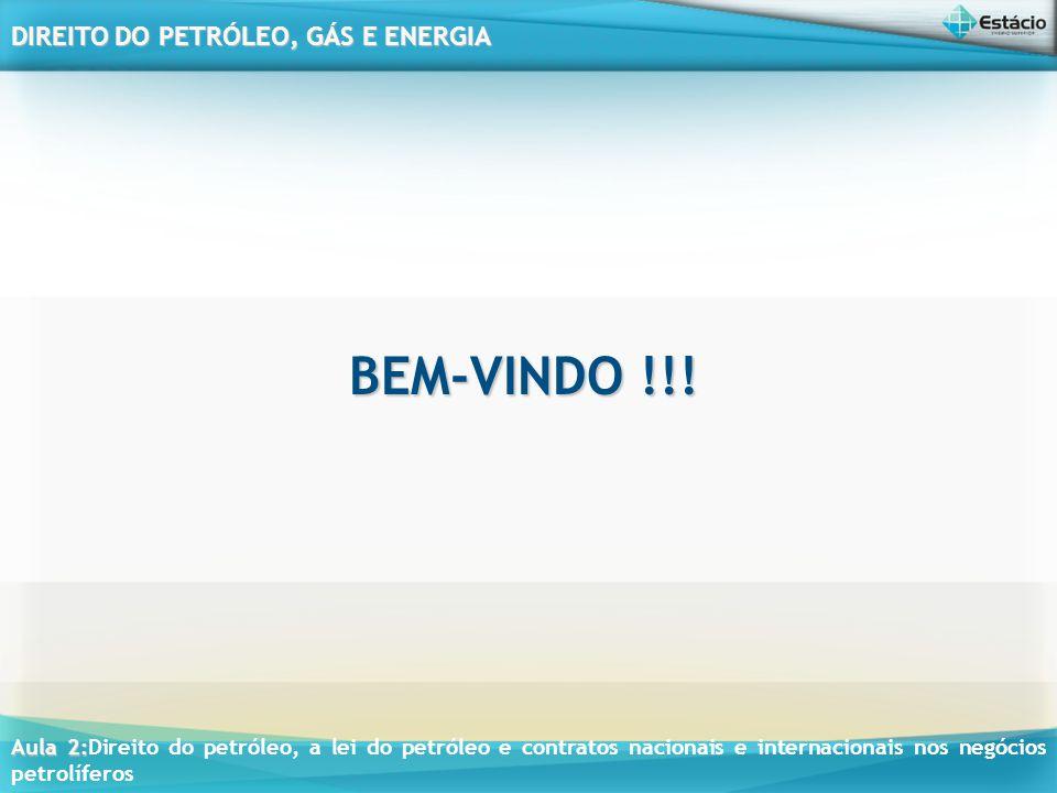 BEM-VINDO !!!