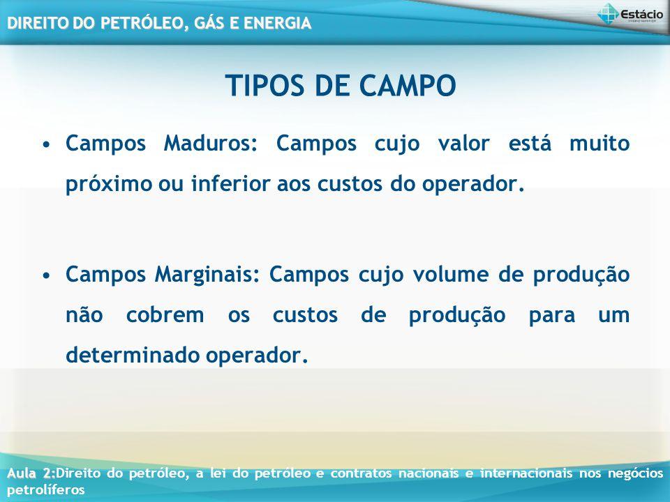 TIPOS DE CAMPO Campos Maduros: Campos cujo valor está muito próximo ou inferior aos custos do operador.