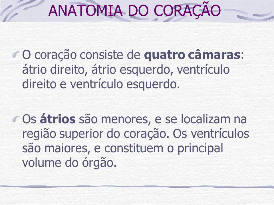 ANATOMIA DO CORAÇÃO O coração consiste de quatro câmaras: átrio direito, átrio esquerdo, ventrículo direito e ventrículo esquerdo.