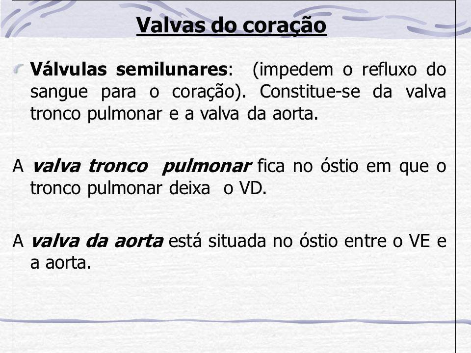 Valvas do coração Válvulas semilunares: (impedem o refluxo do sangue para o coração). Constitue-se da valva tronco pulmonar e a valva da aorta.