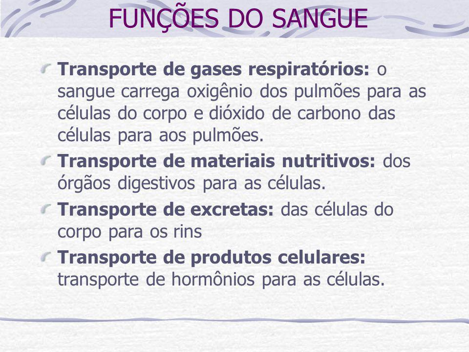 FUNÇÕES DO SANGUE