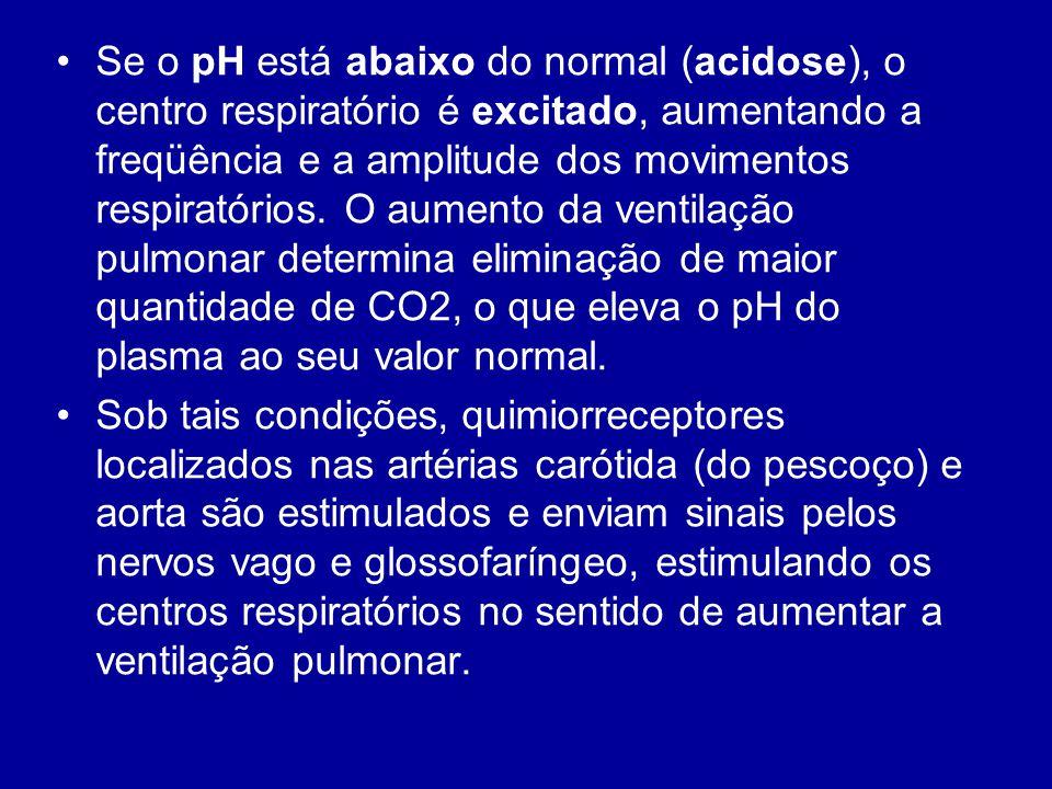 Se o pH está abaixo do normal (acidose), o centro respiratório é excitado, aumentando a freqüência e a amplitude dos movimentos respiratórios. O aumento da ventilação pulmonar determina eliminação de maior quantidade de CO2, o que eleva o pH do plasma ao seu valor normal.