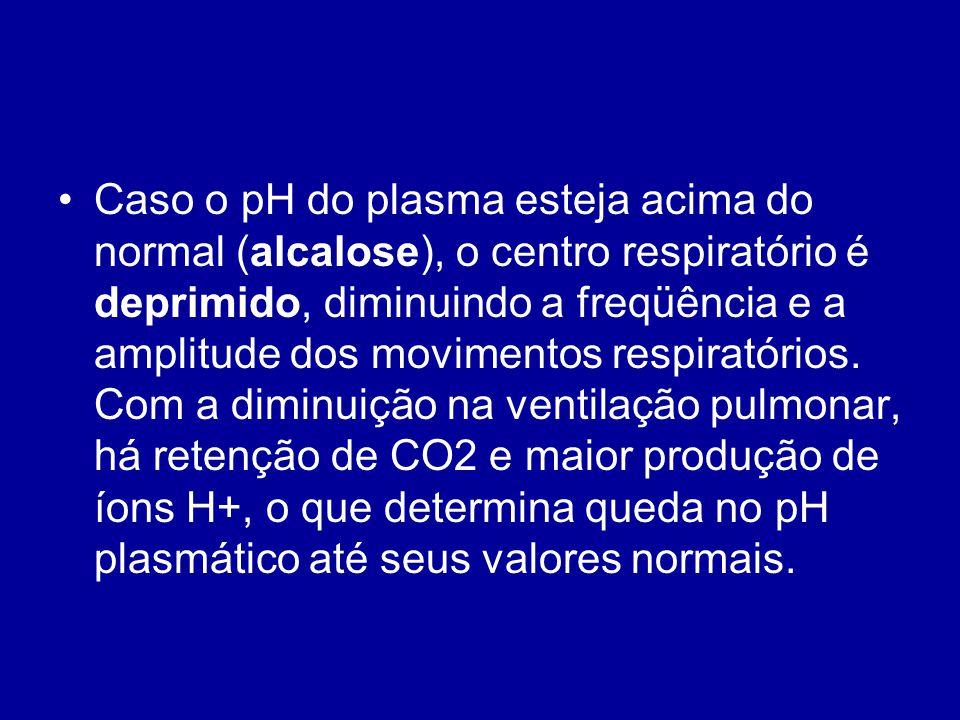 Caso o pH do plasma esteja acima do normal (alcalose), o centro respiratório é deprimido, diminuindo a freqüência e a amplitude dos movimentos respiratórios.