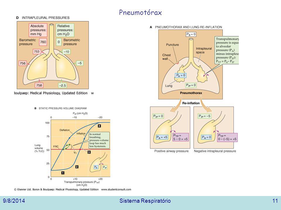 Pneumotórax 3/31/2017 Sistema Respiratório