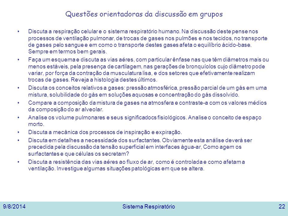 Questões orientadoras da discussão em grupos